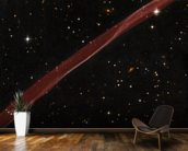 SN 1006 Supernova Remnant mural wallpaper kitchen preview