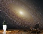 Spiral Galaxy NGC 2841 wallpaper mural kitchen preview