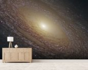 Spiral Galaxy NGC 2841 wallpaper mural living room preview