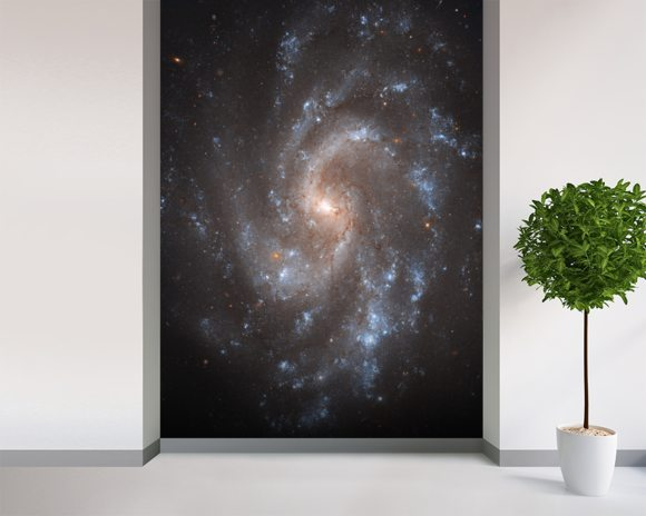Hubble's View of NGC 5584 mural wallpaper room setting