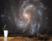 Hubble's View of NGC 5584 mural wallpaper kitchen preview