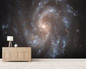 Hubble's View of NGC 5584 mural wallpaper living room preview