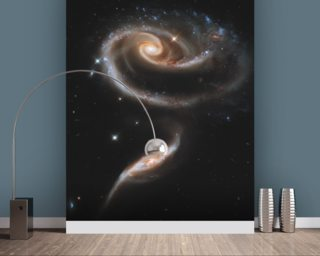 "A ""Rose"" Made of Galaxies Highlights Hubble's 21st Anniversary wall mural"