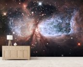 Star-Forming Region S106 wallpaper mural living room preview