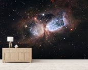 Hubble/Subaru Composite Image of Star-Forming Region S106 mural wallpaper living room preview