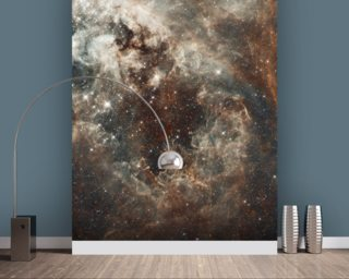 The Tarantula Nebula in the Large Magellanic Cloud Wall Mural Wall Murals Wallpaper