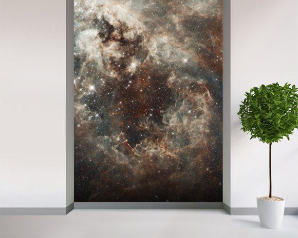 The tarantula nebula in the large magellanic cloud for Cloud wall mural