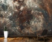 The Tarantula Nebula in the Large Magellanic Cloud wall mural kitchen preview