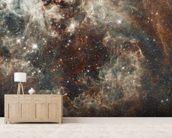 The Tarantula Nebula in the Large Magellanic Cloud wall mural living room preview