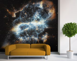 A Cosmic Holiday Ornament, Hubble-Style wall mural