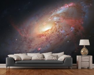 Astronomers Create a Cosmological Masterpiece wallpaper mural