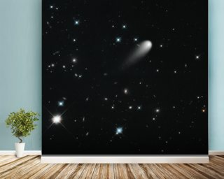 Galaxies, Comets, and Stars! Oh My! wall mural