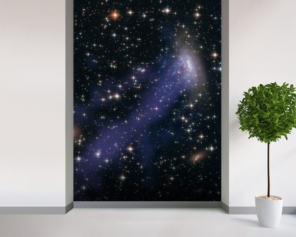 Hubble-Chandra Composite of ESO137-001 mural wallpaper room setting