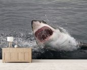 Great White Shark wall mural living room preview