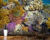 Coral Reef Garden wallpaper mural kitchen preview
