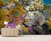 Coral Reef Garden wallpaper mural living room preview