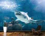 Shark mural wallpaper kitchen preview