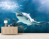 Shark mural wallpaper living room preview