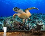 Sea Turtle in Tropical Waters wallpaper mural kitchen preview