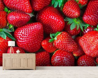 Strawberries Fresh Wall Mural Wallpaper Wall Murals