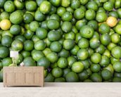 Green Limes mural wallpaper living room preview