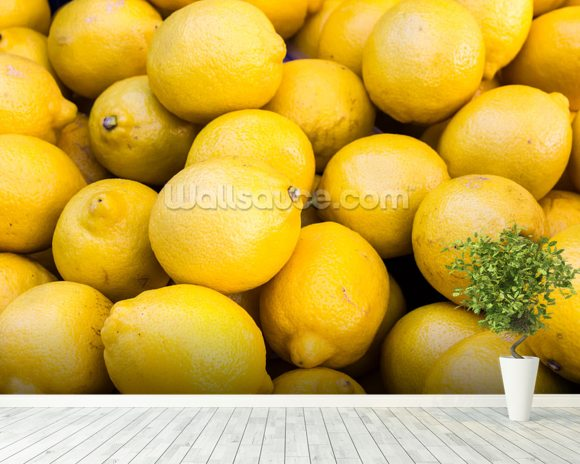 Lemons wall mural room setting