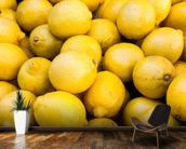 Lemons wall mural kitchen preview