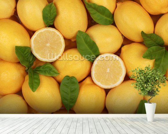 Zesty Lemons wallpaper mural room setting