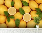 Zesty Lemons wallpaper mural in-room view