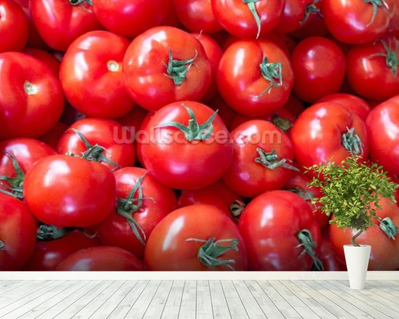 Tomatoes Fresh wall mural room setting