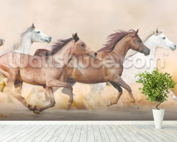 Galloping Herd of Horses wall mural room setting