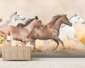 Galloping Herd of Horses wall mural living room preview