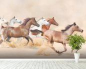 Horses herd running in the sand storm wallpaper mural in-room view