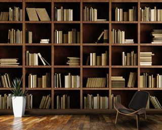 Natural Bookcase Wall Mural