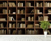 Natural Bookcase Wallpaper Mural wallpaper mural in-room view