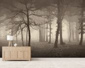 Delusion - Sepia wall mural living room preview