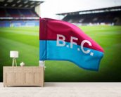 Turf Moor Corner Flag mural wallpaper living room preview