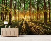 Spring forest wallpaper mural living room preview