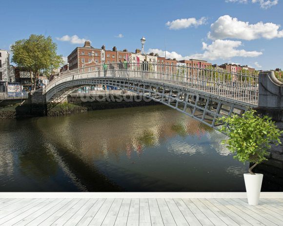 Hapenny Bridge in Dublin mural wallpaper room setting