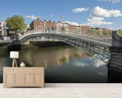 Hapenny Bridge in Dublin mural wallpaper living room preview