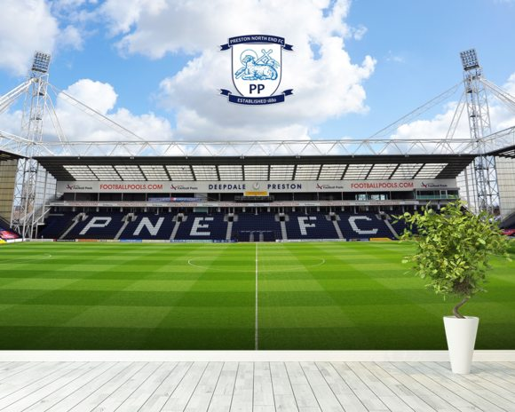 Deepdale Invincibles Stand wallpaper mural room setting