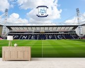 Deepdale Invincibles Stand wallpaper mural living room preview