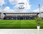Deepdale Invincibles Stand wallpaper mural in-room view