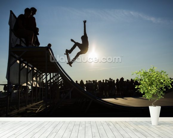 Skateboarder - Jump 2 mural wallpaper room setting