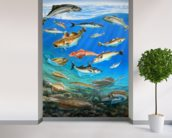 Sea Fish mural wallpaper in-room view