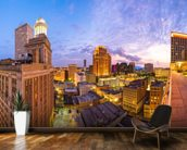 New Orleans Skyline wall mural kitchen preview
