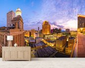 New Orleans Skyline wall mural living room preview