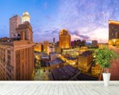 New Orleans Skyline wall mural in-room view