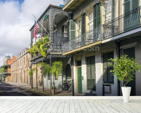 New Orleans French Quarter mural wallpaper room setting