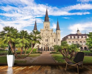 New Orleans Wallpaper Mississippi Wall Murals